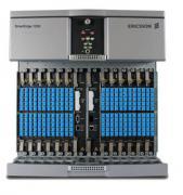 Маршрутизатор Ericsson (RedBack) SE1200H